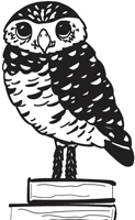 Burrowing Owl Books Logo