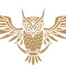 Golden Owl Bookshop
