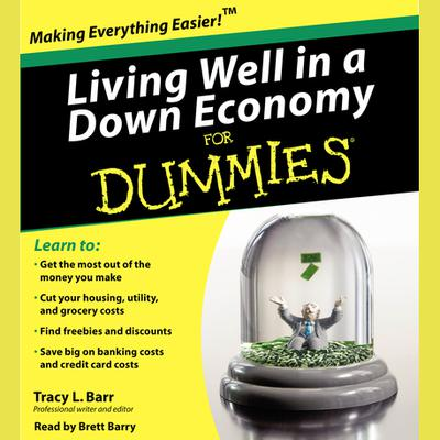 Living Well in a Down Economy for Dummies - Abridged