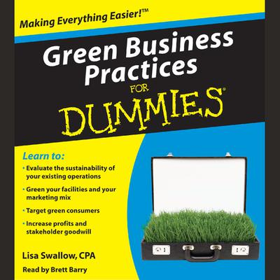 Green Business Practices for Dummies - Abridged