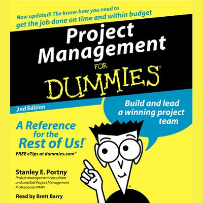 Project Management For Dummies - Abridged