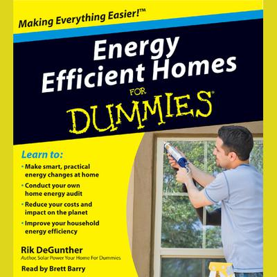 Energy Efficient Homes for Dummies - Abridged