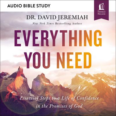 Everything You Need: Audio Bible Studies