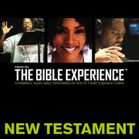 Inspired By … The Bible Experience Audio Bible - Today's New International Version, TNIV: New Testament