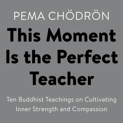 This Moment Is the Perfect Teacher