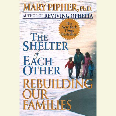 a summary of the shelter of each other rebuilding our families by mary pipher