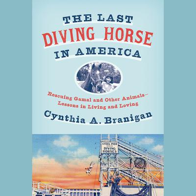 The Last Diving Horse in America
