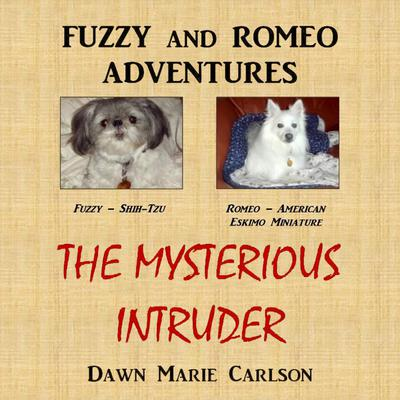Fuzzy and Romeo Adventures: The Mysterious Intruder