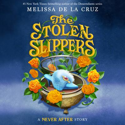 Never After: The Stolen Slipper