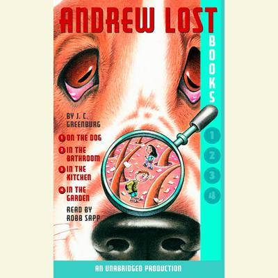 Andrew Lost: Books 1-4