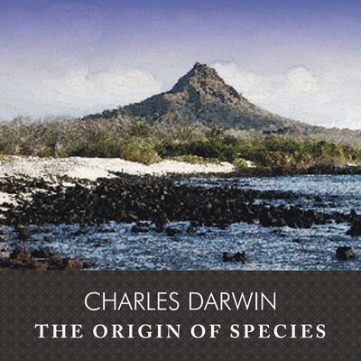 the origins of humanity: the darwinian controversy essay In earlier times people based their apprehension of where worlds originated from the bible but as technological promotions were made scientists began to suggest a theory known as development to explicate how worlds came into being.