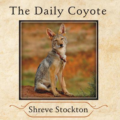 The Daily Coyote