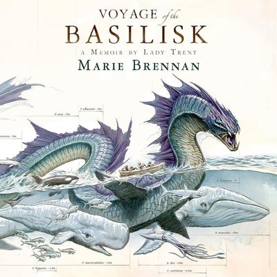 Voyage of the Basilisk