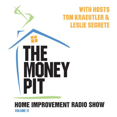 The Money Pit, Vol. 11
