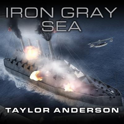 Destroyermen: Iron Gray Sea