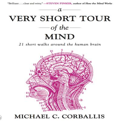 A Very Short Tour the Mind