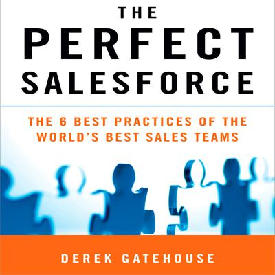 The Perfect SalesForce