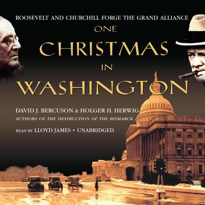 One Christmas in Washington