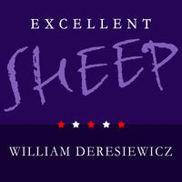Excellent Sheep