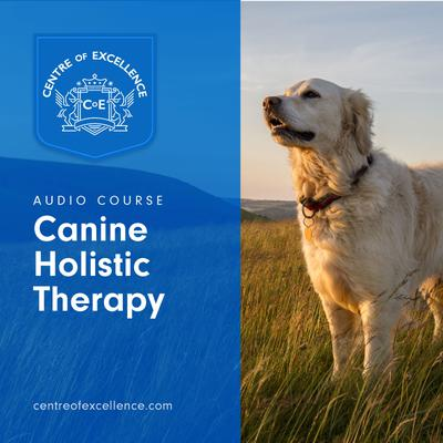 Canine Holistic Therapy