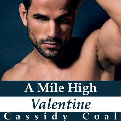 A Mile High Valentine (A Mile High Romance Book 2)