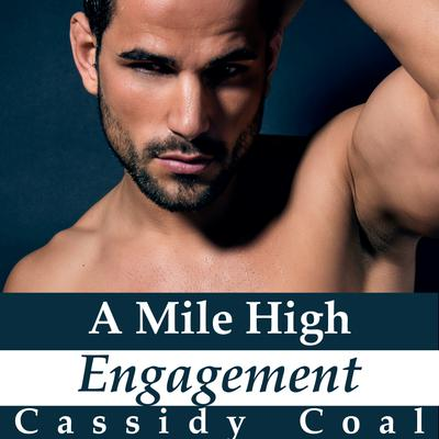A Mile High Engagement (A Mile High Romance Book 6)