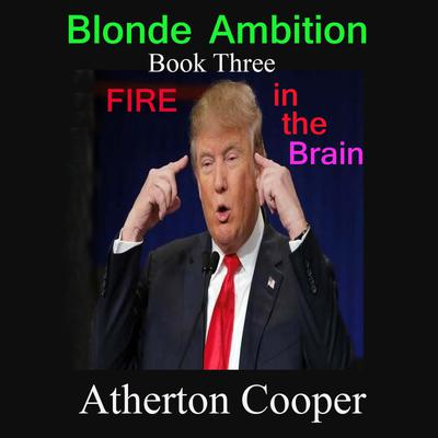 Blonde Ambition - Book Three - Fire in the Brain