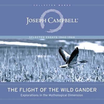 The Flight of the Wild Gander
