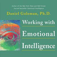 Working with Emotional Intelligence - Abridged