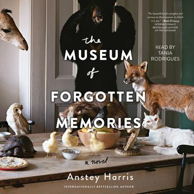 The Museum of Forgotten Memories