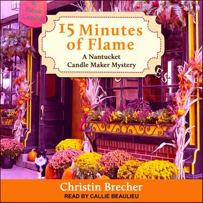 15 Minutes of Flame