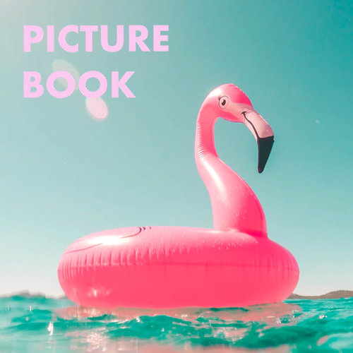 Picture Book Summer