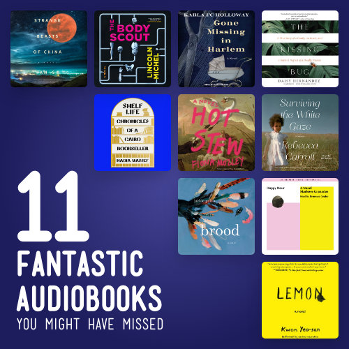 11 Fantastic Audiobooks You Might Have Missed