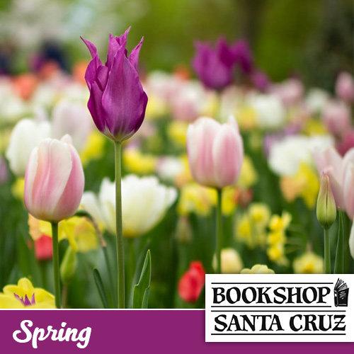 Bookshop Santa Cruz - Spring