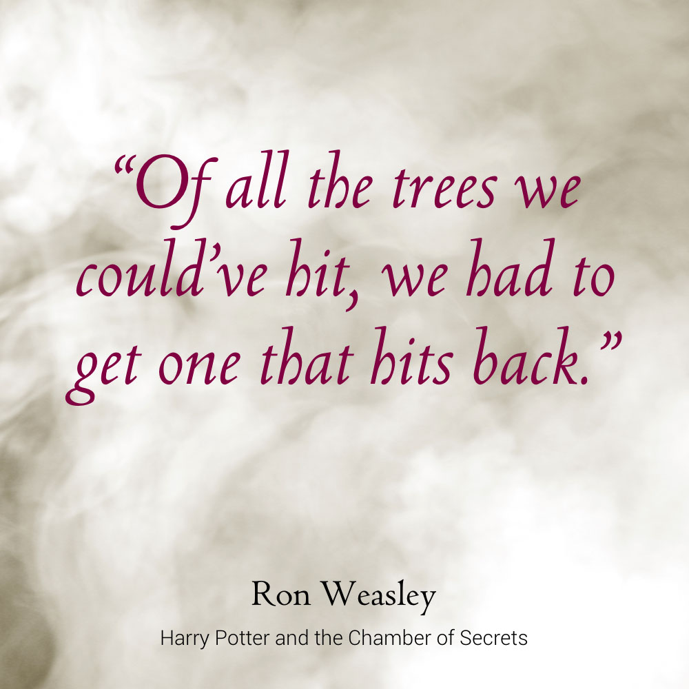Harry Potter Quote About Friendship Libro.fm  Harry Potter And The Chamber Of Secrets  Featured